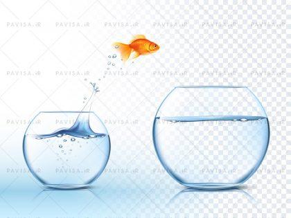 وکتور ماهی و آب