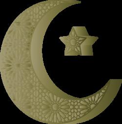 عکس دوربری شده استهلال ماه