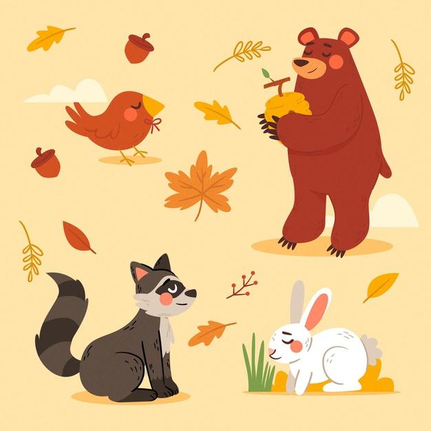 وکتور آماده مجموعه حیوانات جنگل فصل پاییز