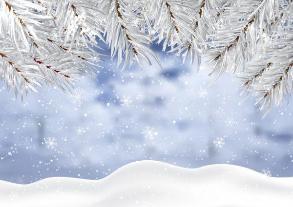 وکتور آماده دانلود کریسمس با شاخه های درخت و برف زمستانی