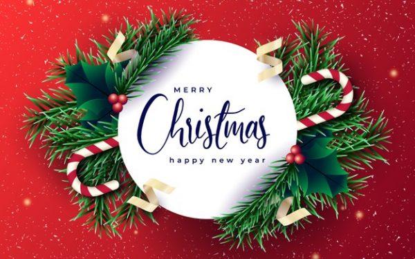 فایل آماده دانلود وکتور بنر کریسمس با شاخه های کاج و پس زمینه قرمز