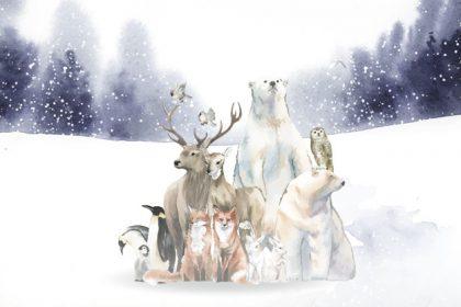 وکتور آماده دانلود گروه حیوانات وحشی زمینه ی برفی زمستان طراحی آبرنگ